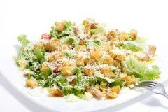 Salada Caesar Fotos de Stock