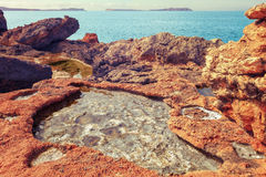 Salada cala coast Ibiza, Balearic Islands Royalty Free Stock Photo