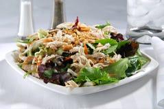 Salada chinesa da galinha Imagem de Stock