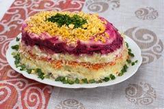 Salada colorida com arenques e vegetais na placa Imagens de Stock