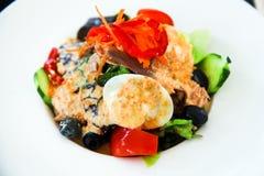Salada com atum e anchous foto de stock