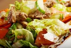 Salada com carne Foto de Stock Royalty Free