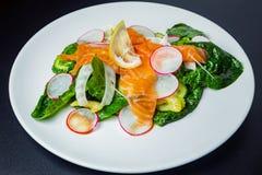 Salada com espinafres, aipo, erva-doce, pepino, rabanete e salmões Fotos de Stock