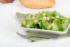 Salada com fritos de pão Fotografia de Stock Royalty Free