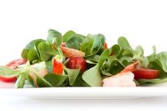 Salada com camarões Fotografia de Stock