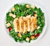 Salada com galinha Fotografia de Stock