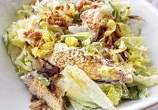 Salada com galinha Imagens de Stock