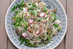 Salada com os noddles chineses finos Foto de Stock
