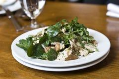 Salada com peito e porcas de galinha foto de stock