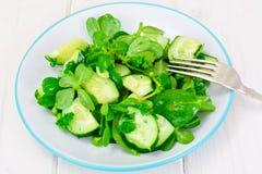 Salada com pepino, Purslane e as ervilhas verdes em discos escuros Foto de Stock Royalty Free
