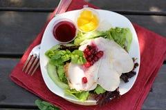 Salada com peru imagem de stock royalty free