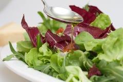 Salada com petróleo verde-oliva virgem Imagem de Stock