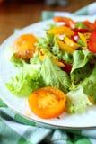 Salada com pimentas e alface e os tomates vermelhos e amarelos Foto de Stock