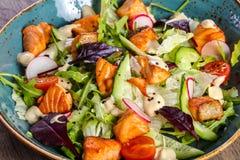 Salada com salmões grelhados fotos de stock royalty free