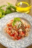 Salada com soletrado e tomates fotos de stock