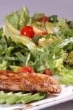 Salada com tomates Imagens de Stock