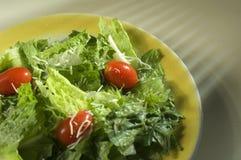 Salada com tomates e queijo Fotos de Stock Royalty Free