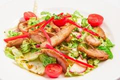 Salada com vegetais e carne Fotos de Stock Royalty Free