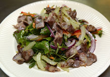 Salada com vegetais e carne o 29 de setembro de 2016 Foto de Stock