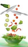 Salada com vegetal Imagens de Stock