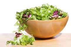 Salada com verdes Fotografia de Stock
