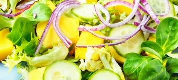 Salada com verdes misturados e manga Fotos de Stock Royalty Free
