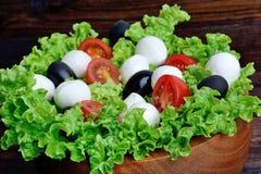 Salada da alface com tomate e azeitona da mussarela em uma bacia foto de stock