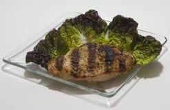 Salada da alface do Bib com galinha grelhada Fotografia de Stock Royalty Free