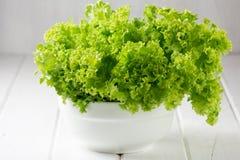 Salada da alface na bacia do wihte no fundo branco Imagens de Stock