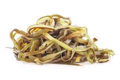 Salada da alga imagem de stock