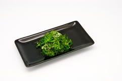 Salada da alga isolada imagens de stock