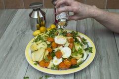 Salada da batata Fotos de Stock Royalty Free