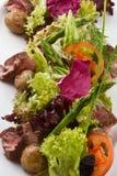 Salada da carne fotografia de stock