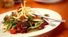 Salada da carne Imagem de Stock Royalty Free