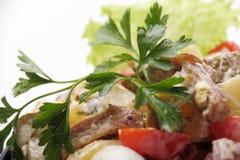 Salada da carne Imagem de Stock