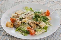 Salada da carne com vegetais e pão torrado Fotografia de Stock Royalty Free