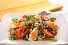 Salada da carne de porco fotografia de stock