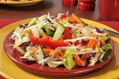 Salada da costeleta do chinês Imagens de Stock