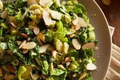 Salada da couve e da couve-de-Bruxelas Foto de Stock Royalty Free