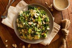 Salada da couve e da couve-de-Bruxelas Fotos de Stock