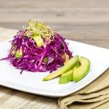 Salada da couve e do abacate Fotografia de Stock