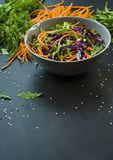 Salada da couve vermelha, das cenouras e dos verdes Decorado com vegetais e as ervas cortados Cortando tiras Fundo escuro fotografia de stock