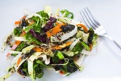 Salada da desintoxicação Fotografia de Stock Royalty Free