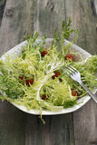 Salada da endívia Fotos de Stock