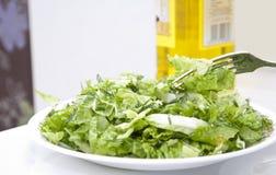 Salada da folha da alface fotografia de stock royalty free