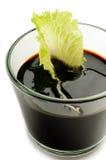 Salada da folha no vinagre balsâmico foto de stock royalty free