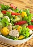 Salada da galinha Fotografia de Stock