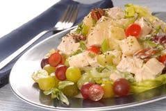 Salada da galinha Imagens de Stock Royalty Free