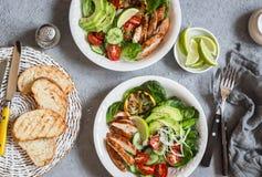 Salada da galinha grelhada e do legume fresco Conceito do alimento da dieta saudável Em um fundo claro Imagem de Stock Royalty Free