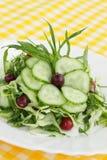 Salada da mola Imagens de Stock